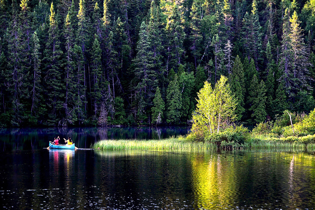 Canoeing on quiet golden pond at a local State Park.