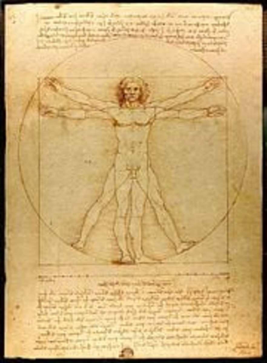 Renaissance period-Leonardo da Vinci's Vitruvian Man