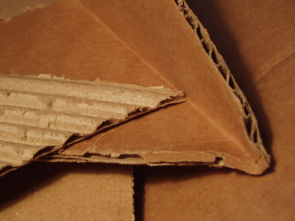 Corrugated cardboard is the perfect trap for earwigs.