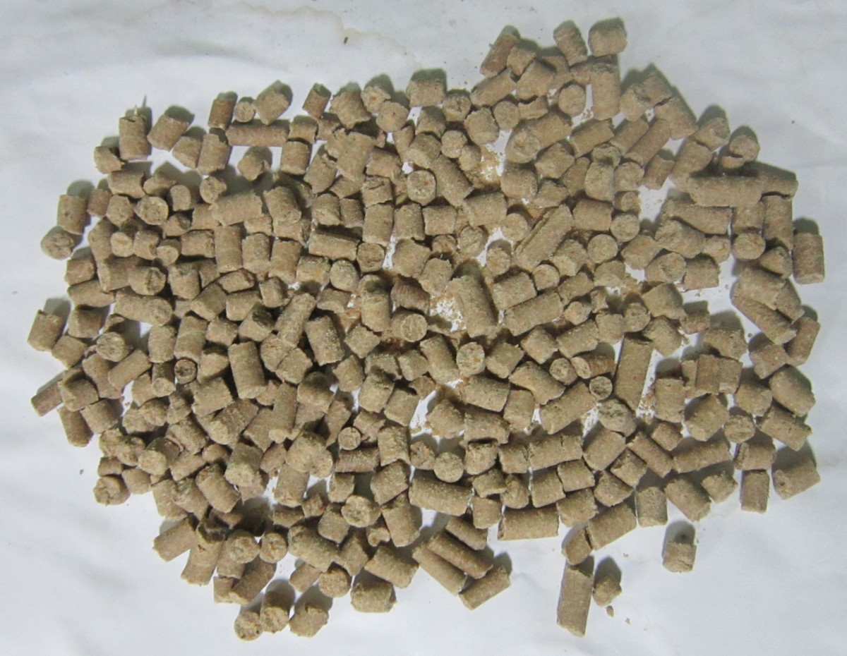 Sluggo pellets are another organic way to get rid of garden pests, including earwigs.