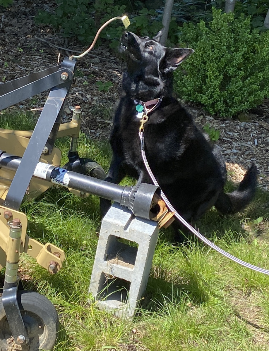 Reina finding source on the tip of the equipment attachment