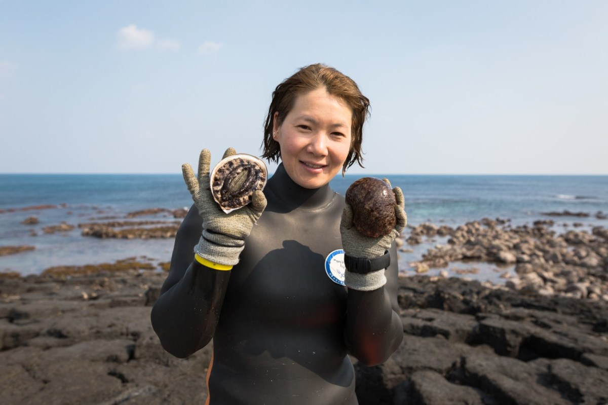 Jeju Island's 'haenyeo' are considered to be South Korea's first working mothers, breaking the traditionally patriarchal societal norms to be the breadwinners for their families.