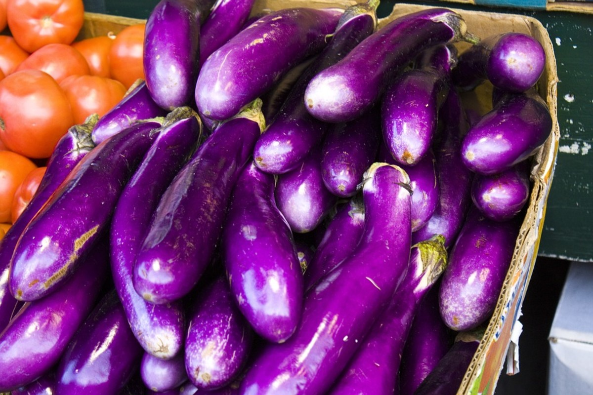 You can eat your water from eggplant.