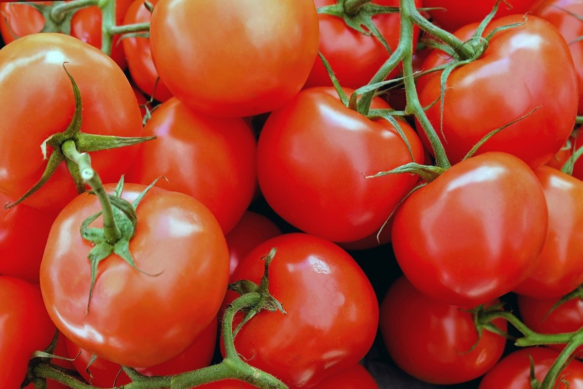 You can eat your water by eating tomatoes.
