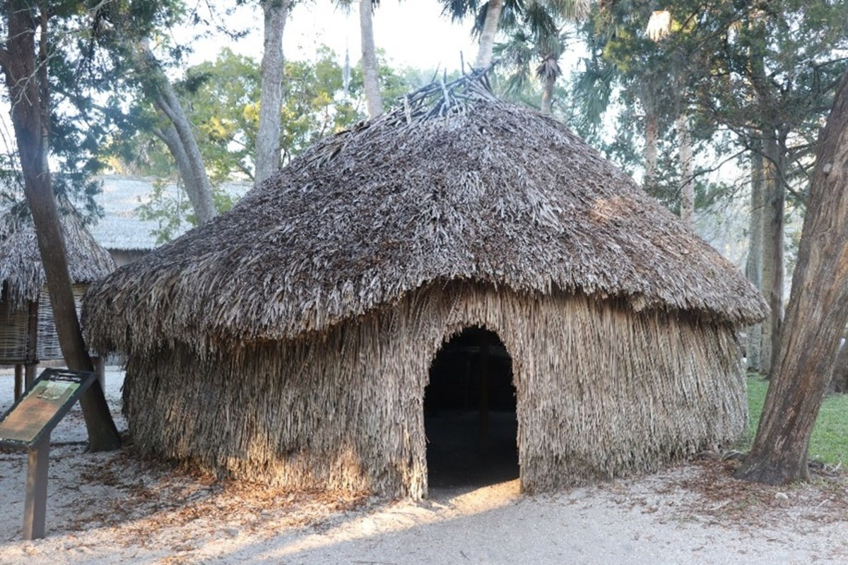 """An """"anoti,"""" or large Timucuan family house"""