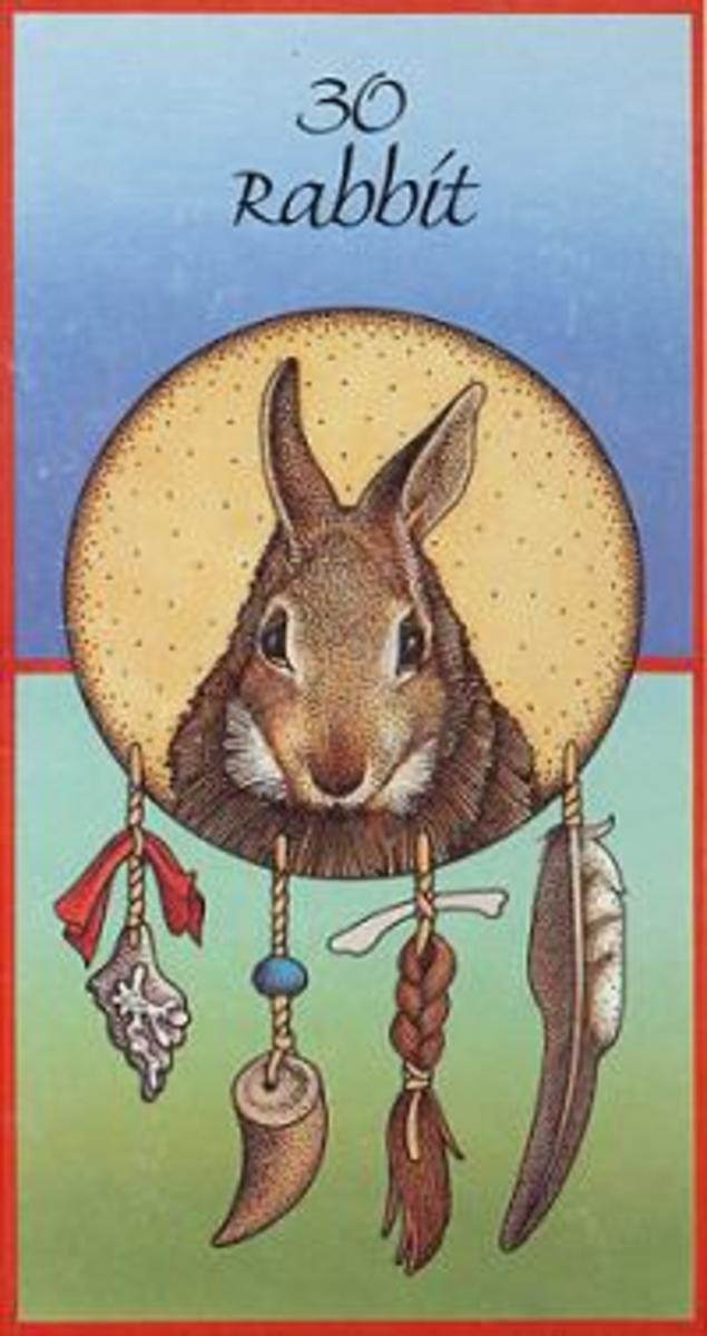 Meaning of Fox Animal Medicine Cards