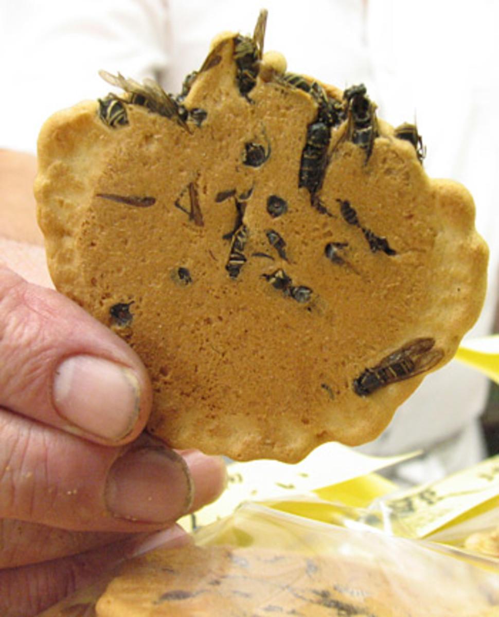 Wasp cracker, or jibachi senbei, from Japan