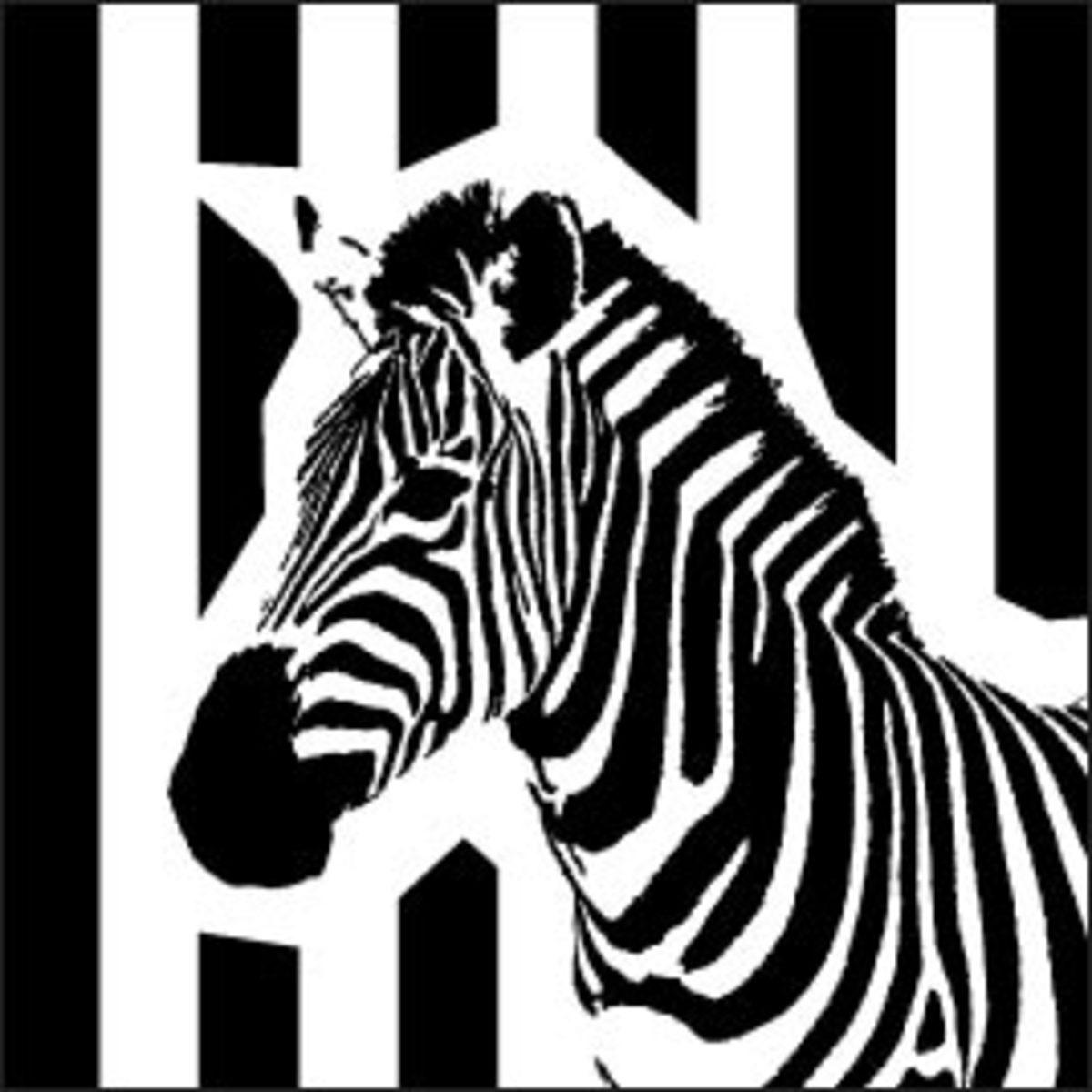 zebra-ideas.co.uk