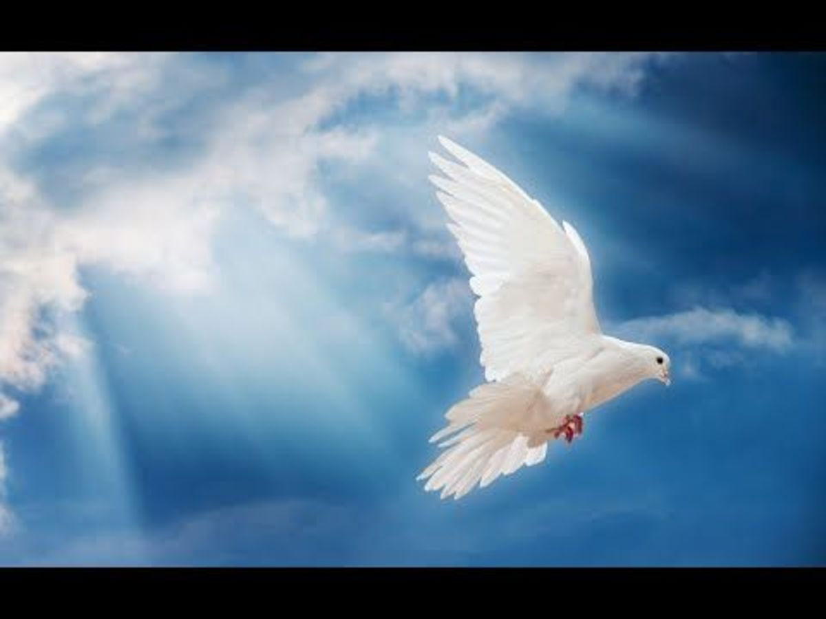 the-role-of-the-holy-spirit-in-christian-education