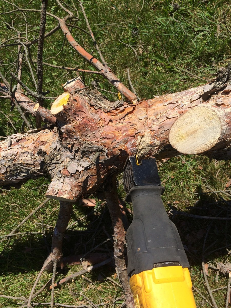cutting-trees-down-with-ease