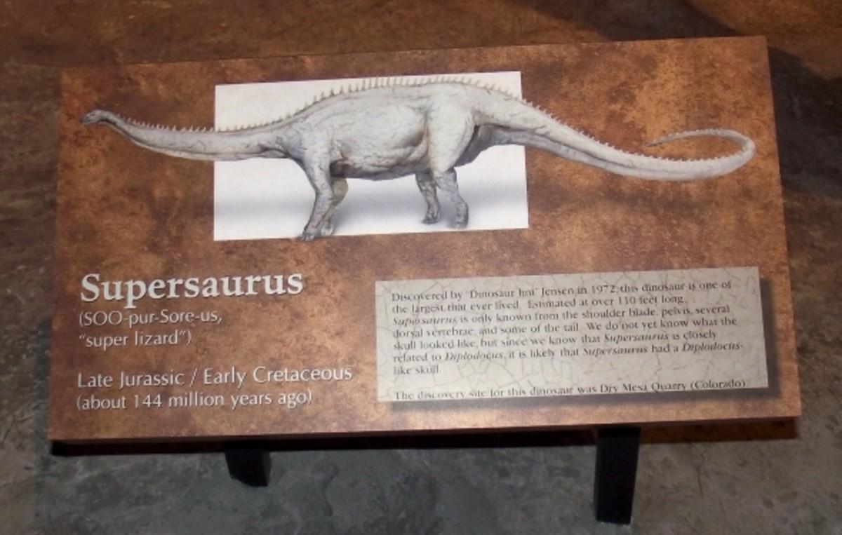 Information display on Supersaurus.