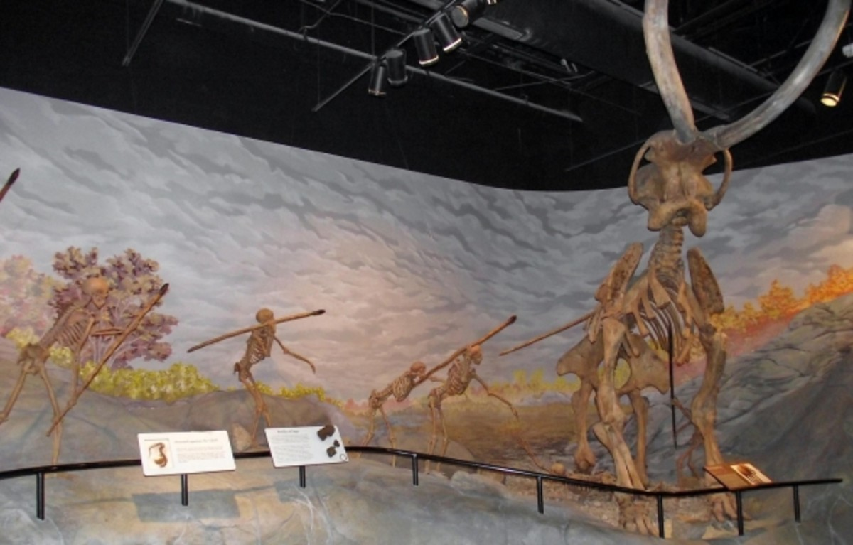 Prehistoric man display at the Museum of Ancient Life.