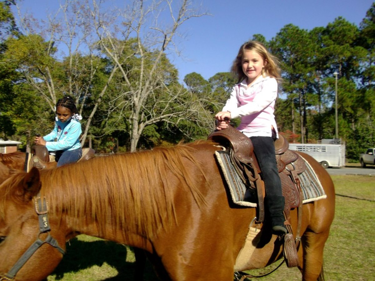 The granddaughters love horses!