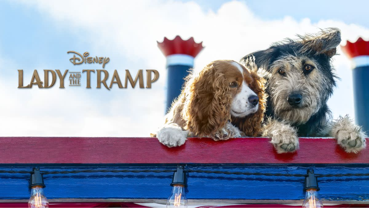 In 1955, Disney's Lady and the Tramp, an animated film about a pampered cocker spaniel named Lady, was released.