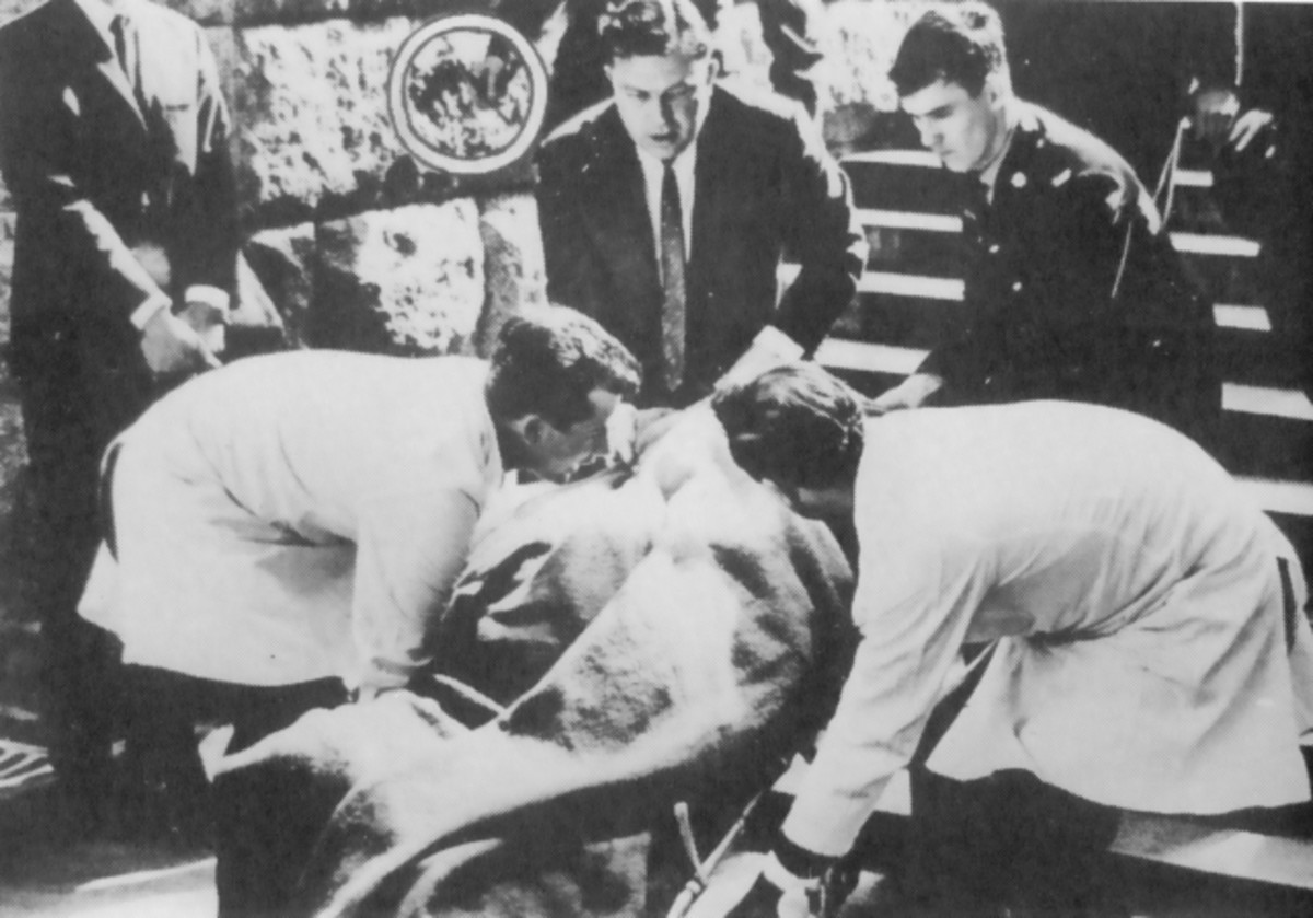 "The body of Dr Verwoerd being carried down the steps of the House of Assembly. Circled is the assassin's dagger in the hand of a policeman. Photo from the book ""Architect of Apartheid"" by Henry Kenney"
