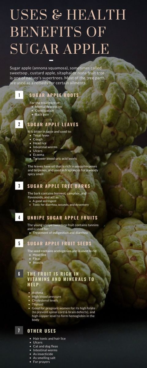 Uses and Health Benefits of Sugar Apple Infographic