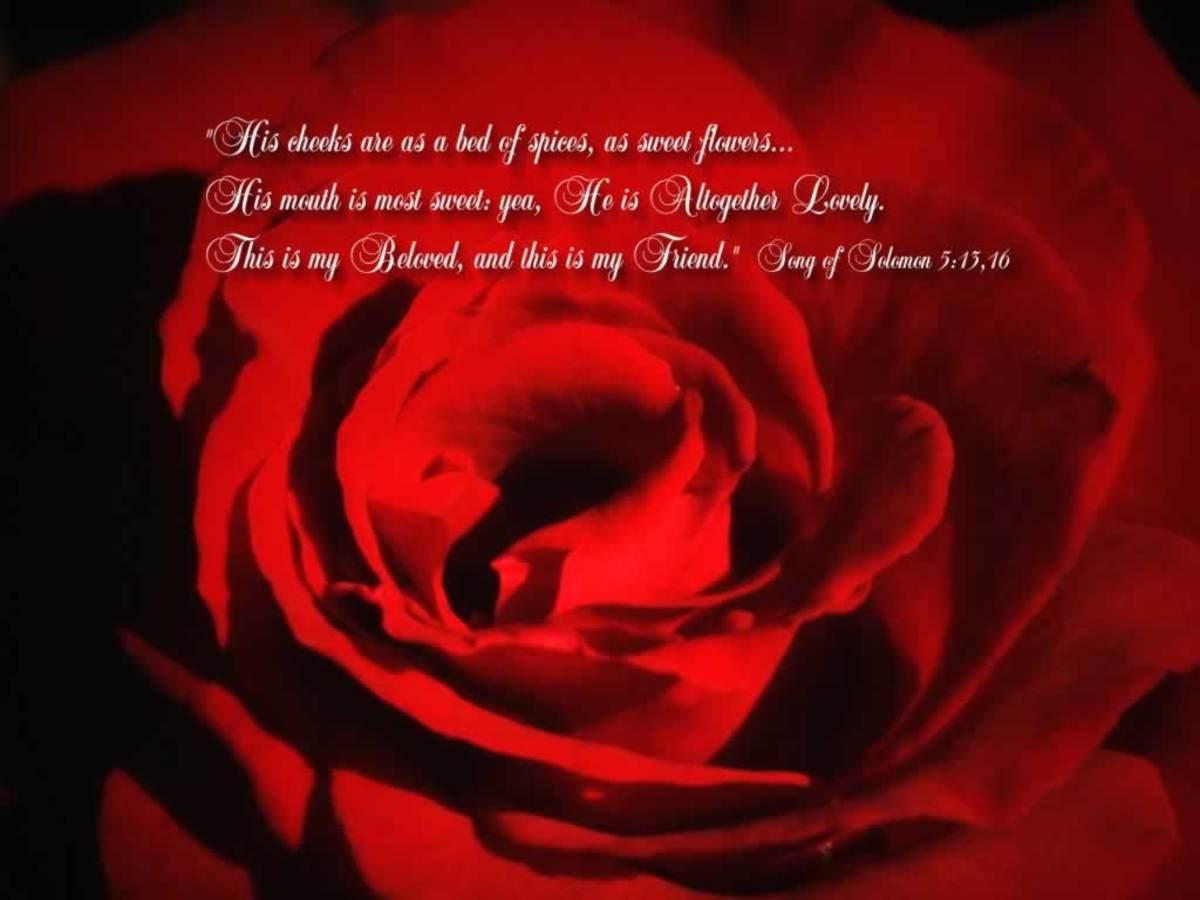 when-my-beloved-sings-mondays-inspiration-88-to-the-esteemed-writer-linda-crampton-alicia