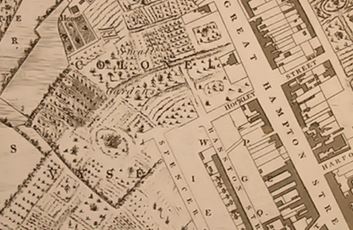 """The Piggott-Smith Map from 1828 shows a section marked """"Vyse"""" just below the mid left of this image - above which is a mound with what looks like a structure upon it. Could this be the lost Birmingham castle in Hockley?"""