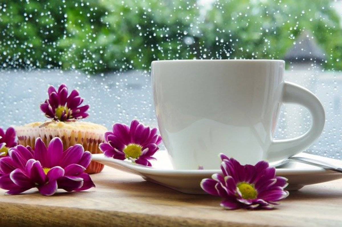 The rain falls as you enjoy a cup of coffee.