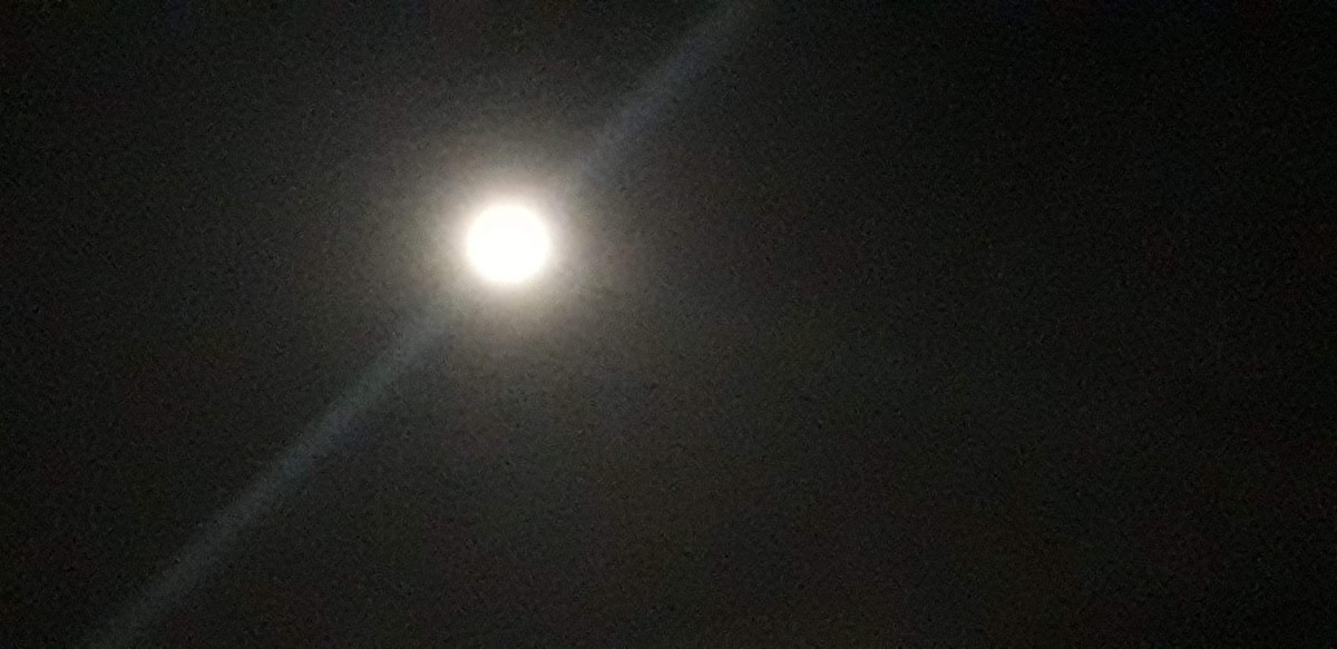 There is only 'One' Moon to cool the nights