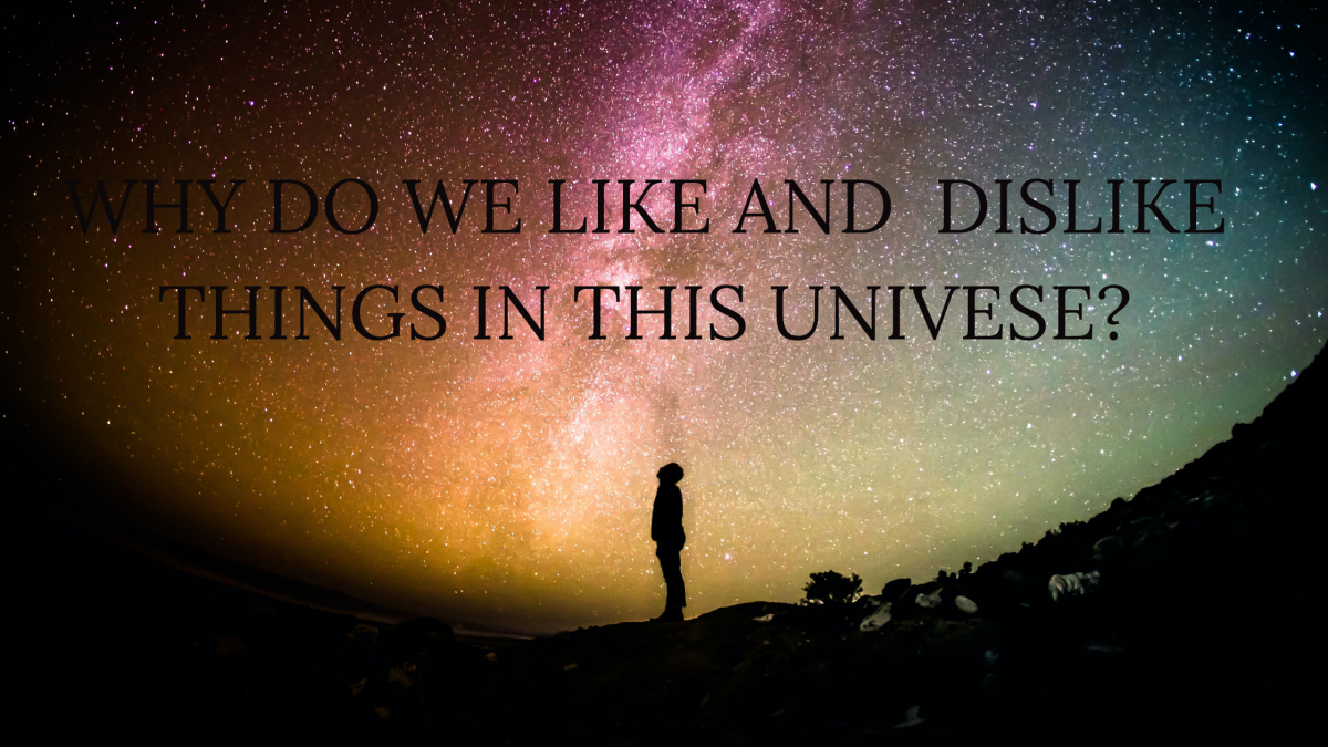 Why Do We Like or Dislike Things in This World?