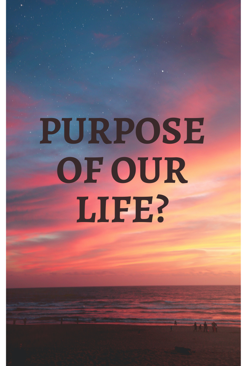 Find your own purpose for your life, otherwise nature would not assign you
