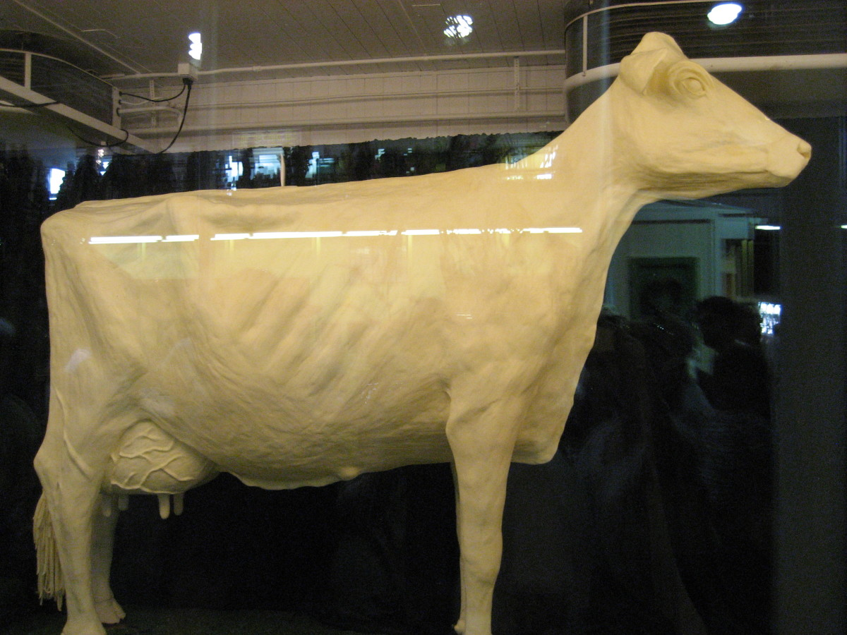 The 2009 Butter Cow
