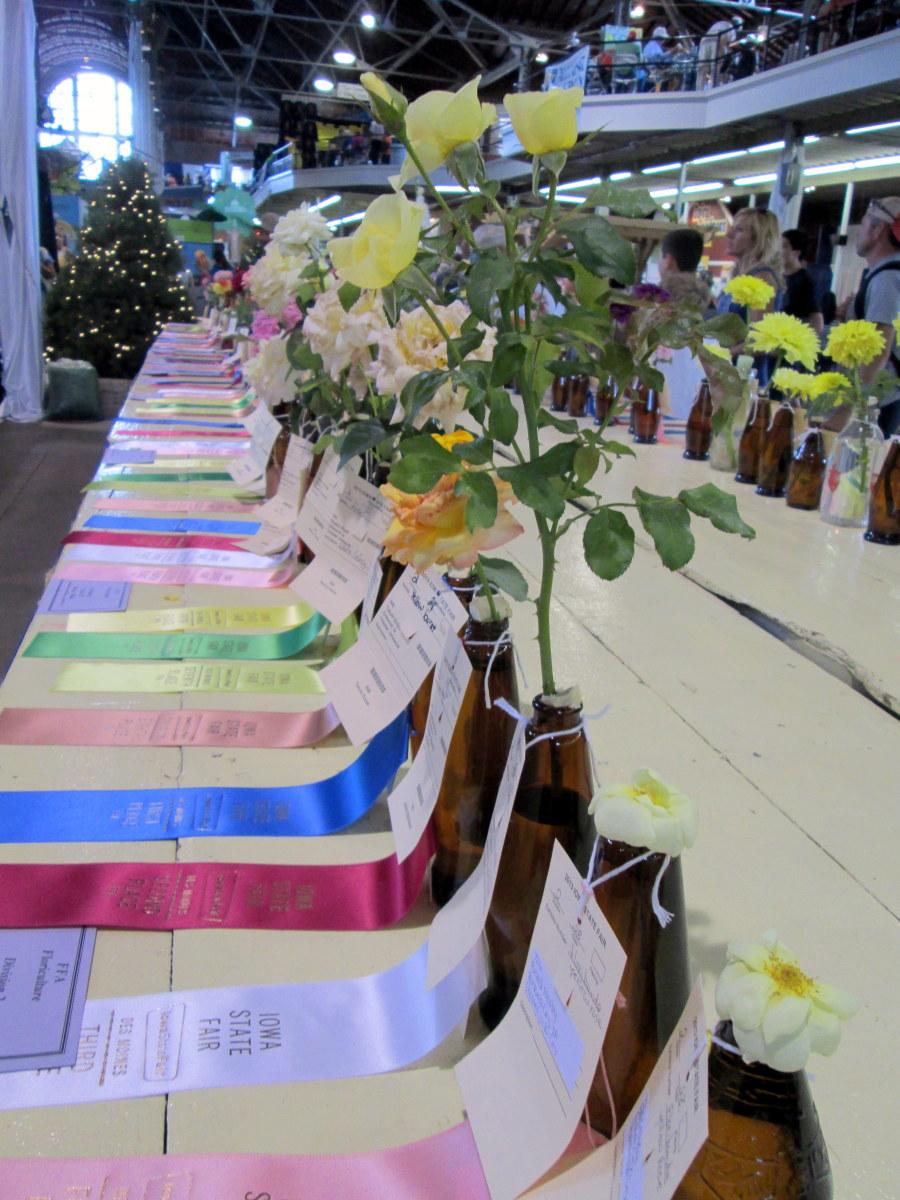 Prize-winning flowers on display.