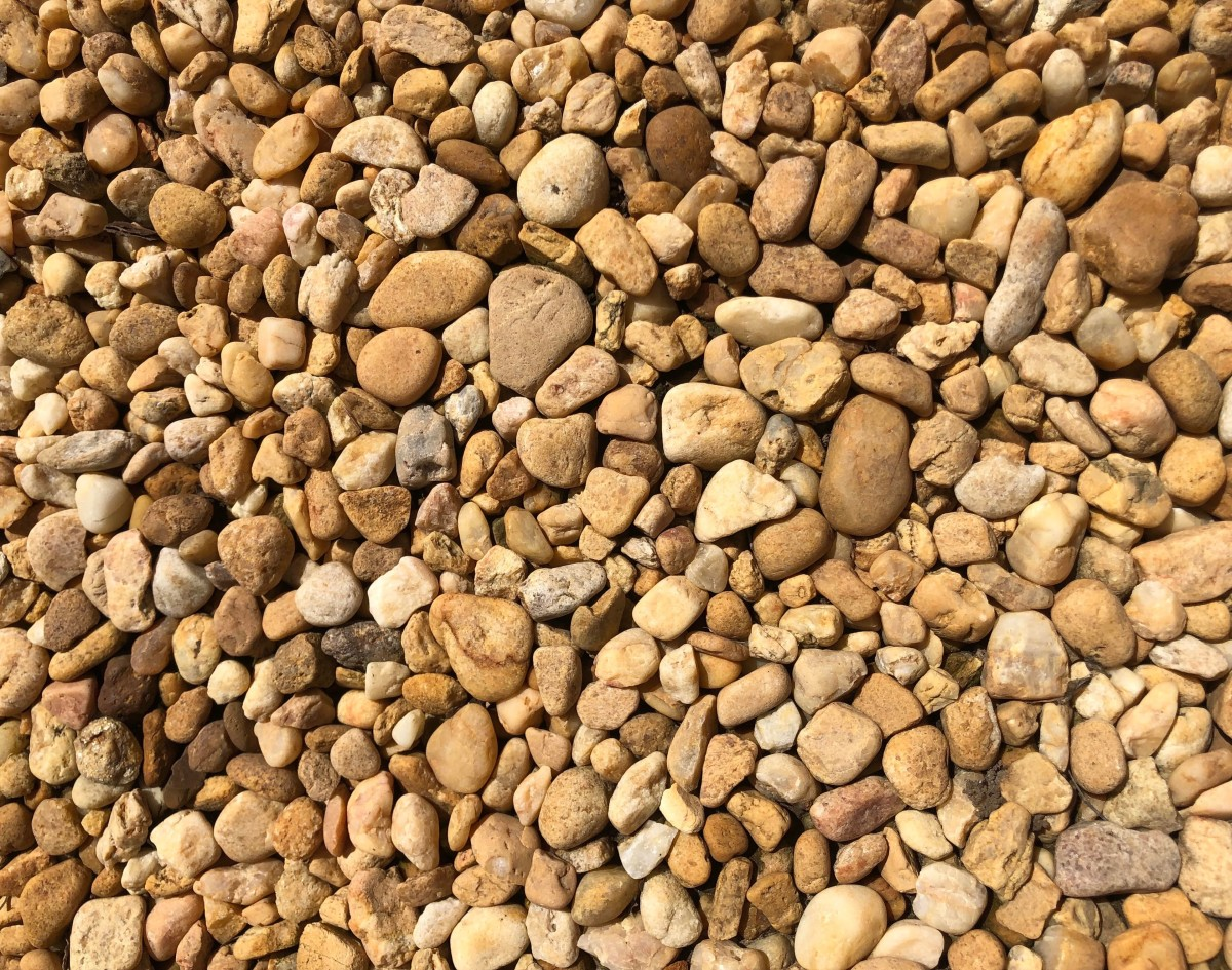 Of all the rocks used in place of real mulch, I think river rocks are the prettiest. Still they can be deadly for plants with shallow roots.