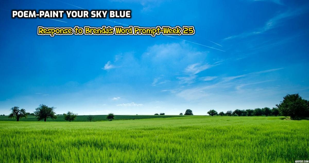 Soothing Blue Sky