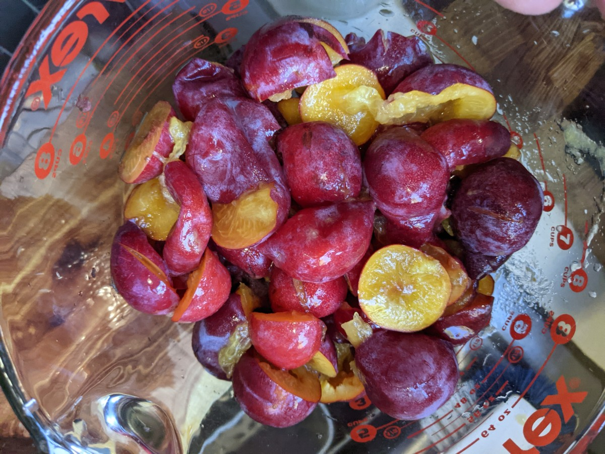 plum-jelly-from-windfall-fruit