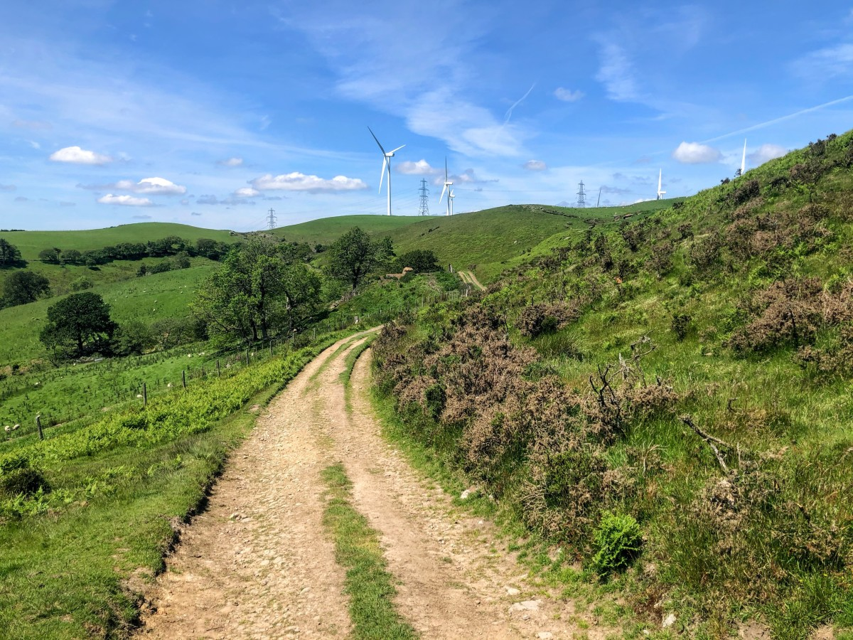 The wind farm is a familiar sight throughout the walk.