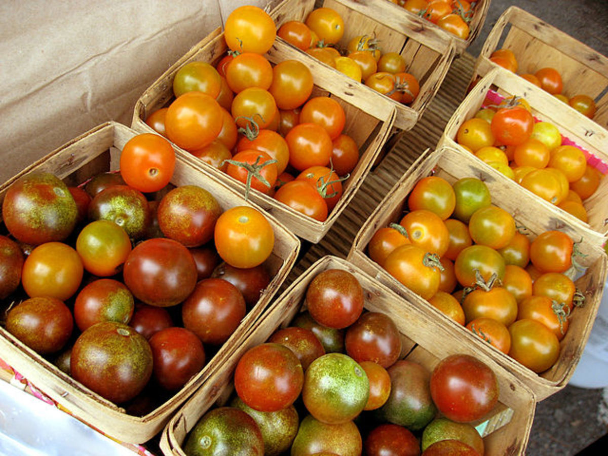 Local Farmers' Markets are a great place to find food that is not genetically modified.