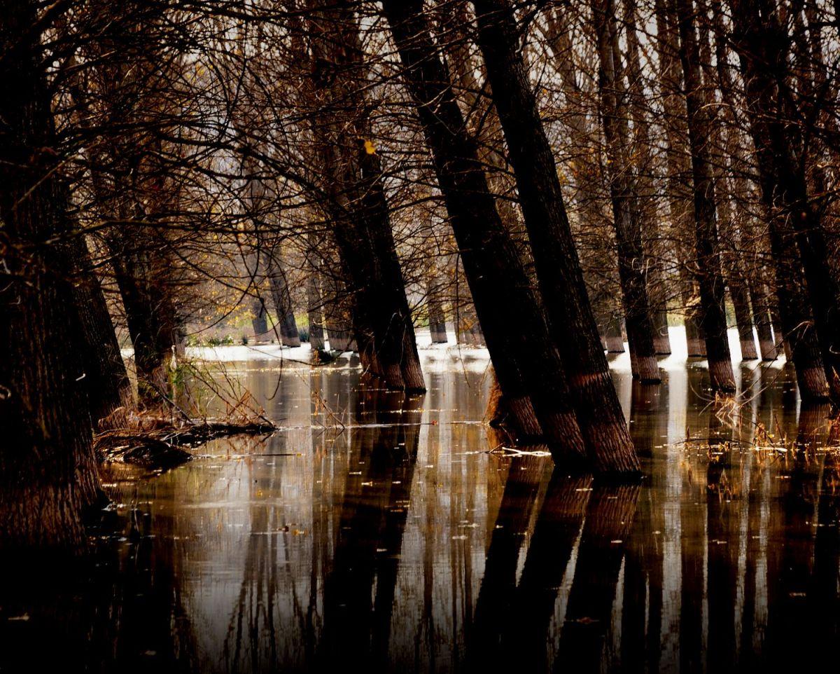 Skuna River flooding