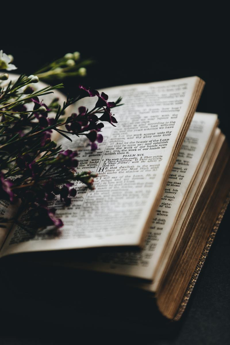 Purple flowers on a book page
