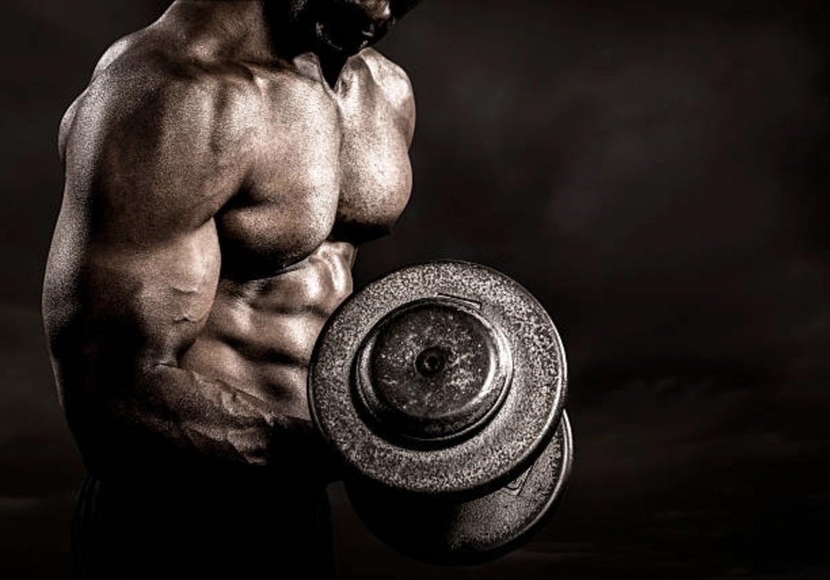 standards-of-building-muscles