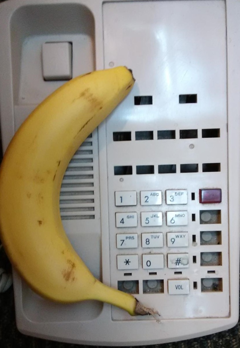 You can make your very own bananafone and then use it to call up the White House and say Hello..
