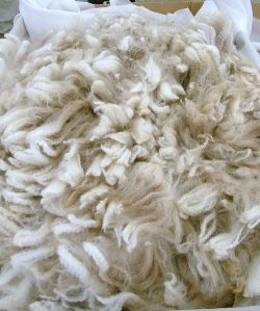 Natural Fleece is basically wool