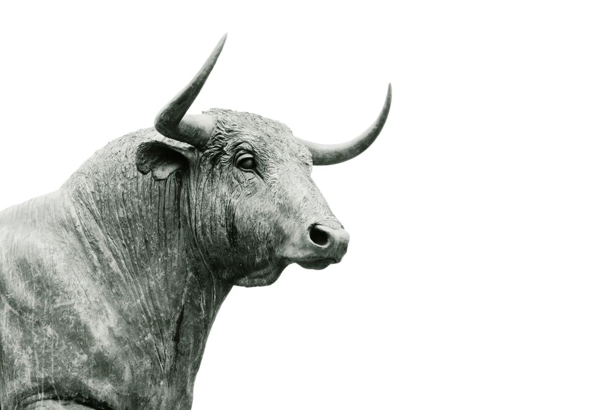 You Are Very Lucky If You Are a Taurus, This Is Why