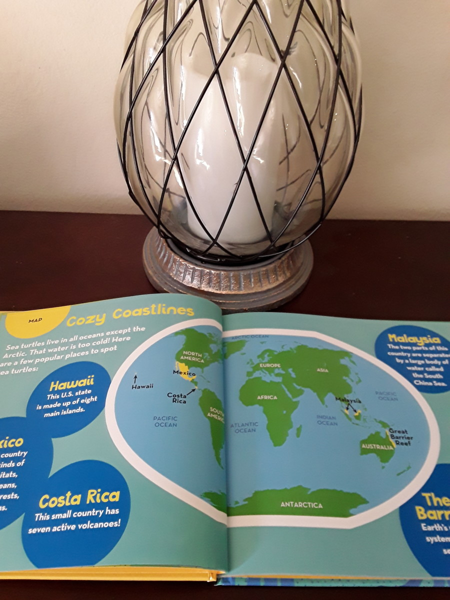 pandas-sea-turtles-and-fun-facts-about-our-oceans-in-collection-of-books-from-national-geographic-kids