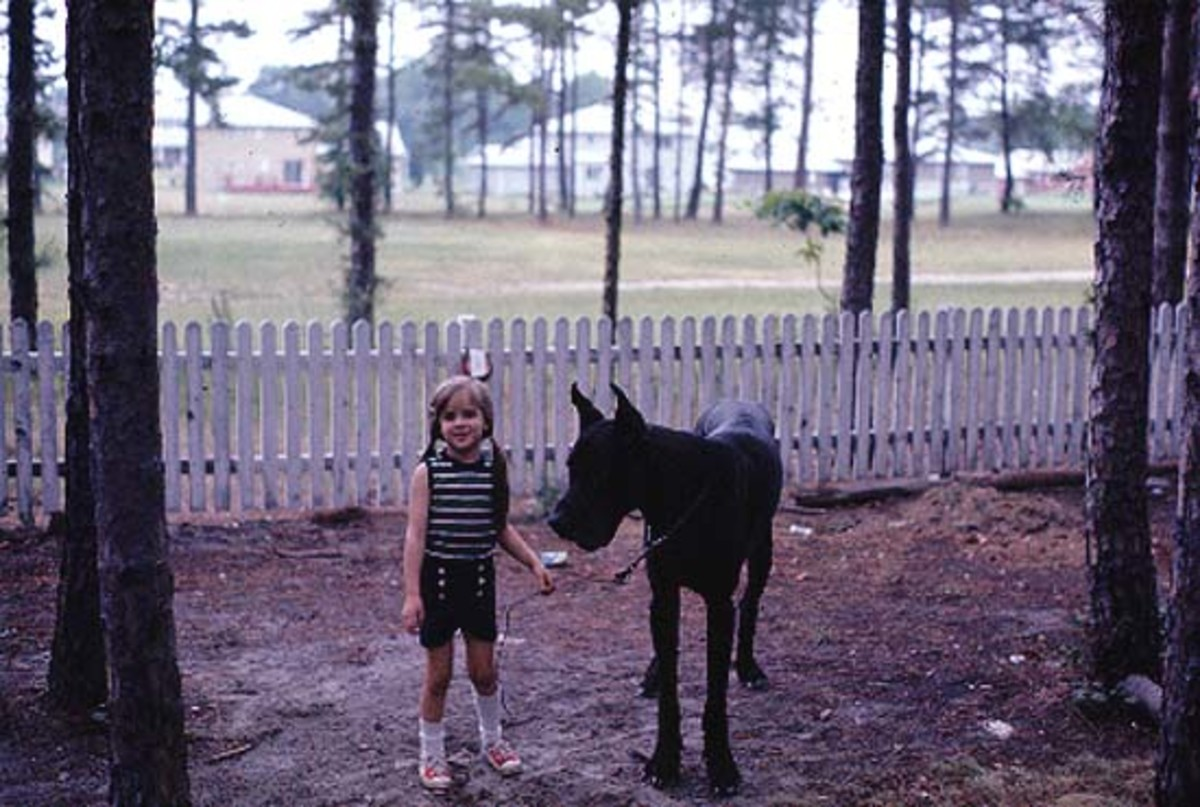 My sister when she was 6 and our Great Dane, Zorba.  Best friends!