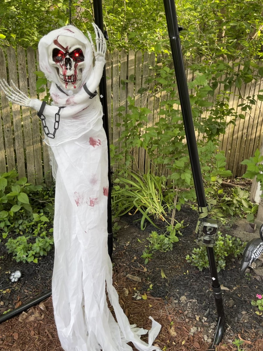 Sometimes I  use this Halloween decoration to scare critters away from my garden.