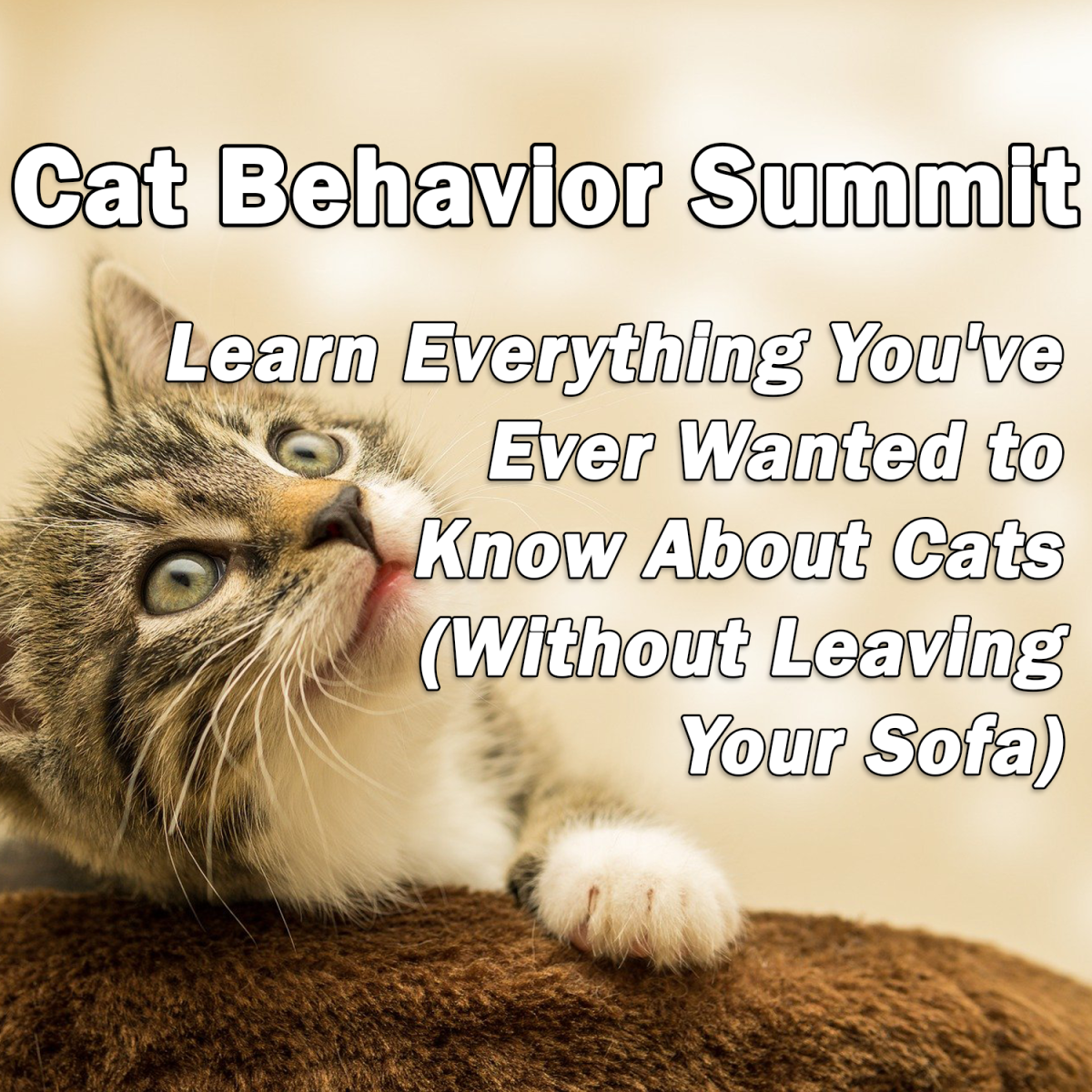 Cat Behavior Summit: Learn Everything You've Ever Wanted to Know About Cats (Without Leaving Your Sofa)