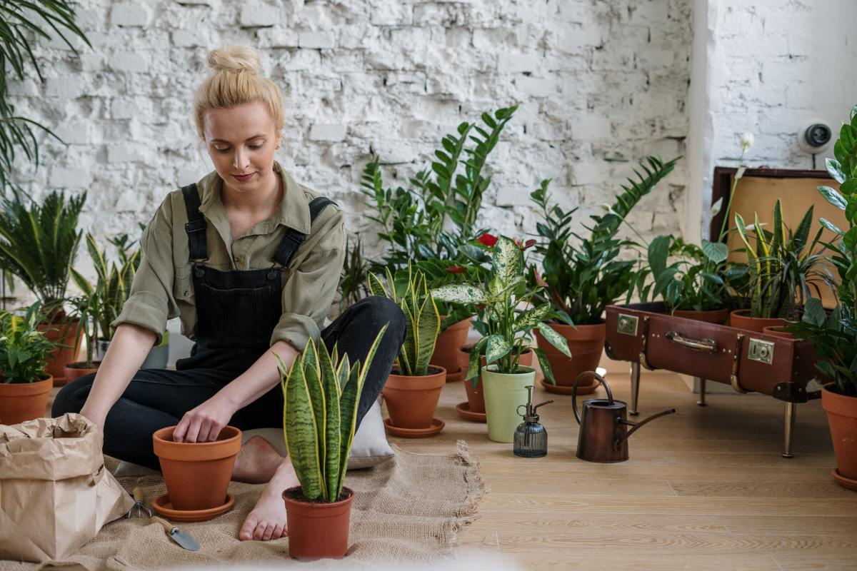 Can Gardening Teach You Life Lessons? Let's Find Out