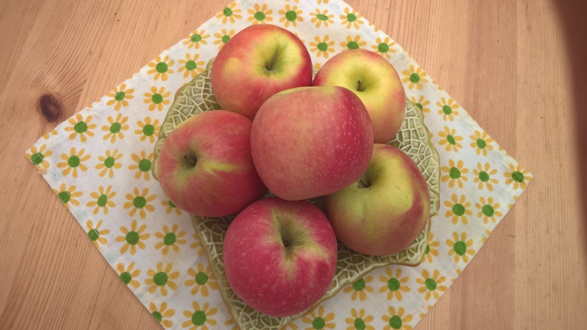 What To Do With Apples- 10 Great Ideas