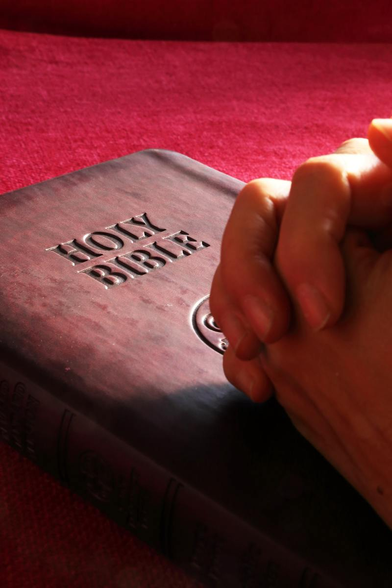 The Holy Bible is a good reference to learn of God's will and promises to us