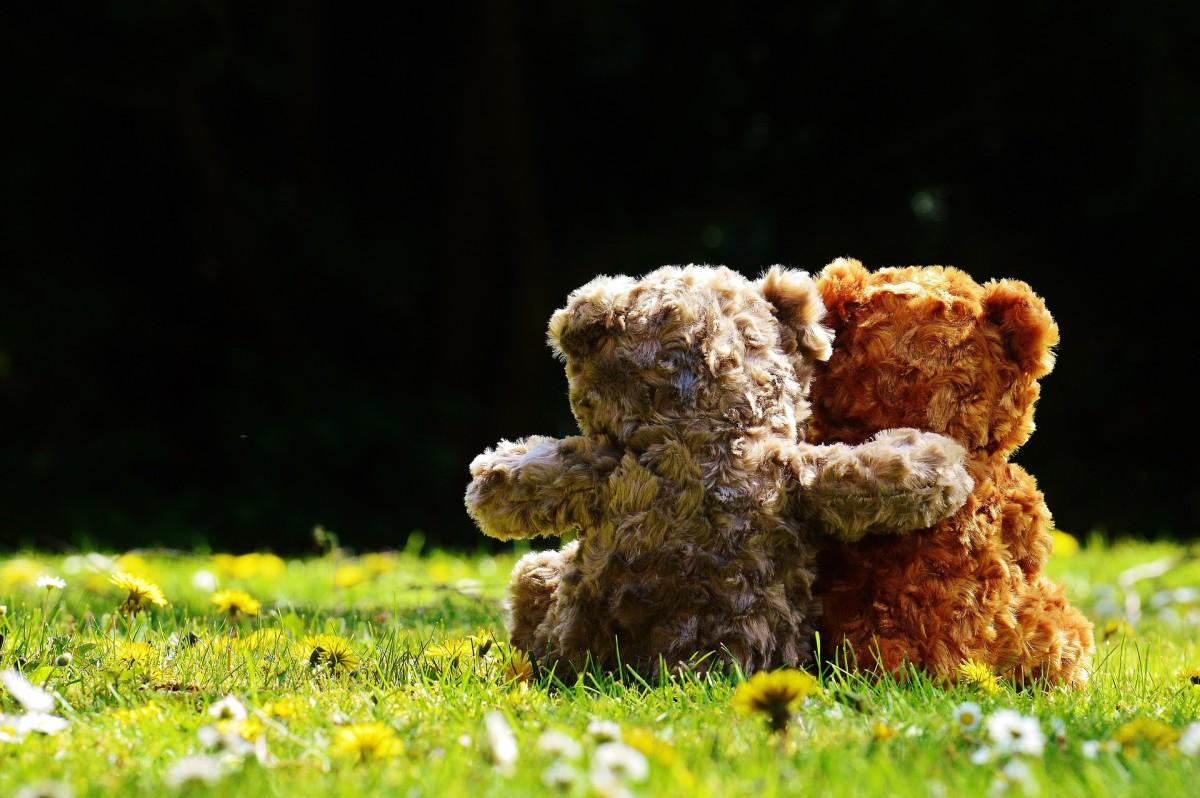 Teddy Bears are good huggers.