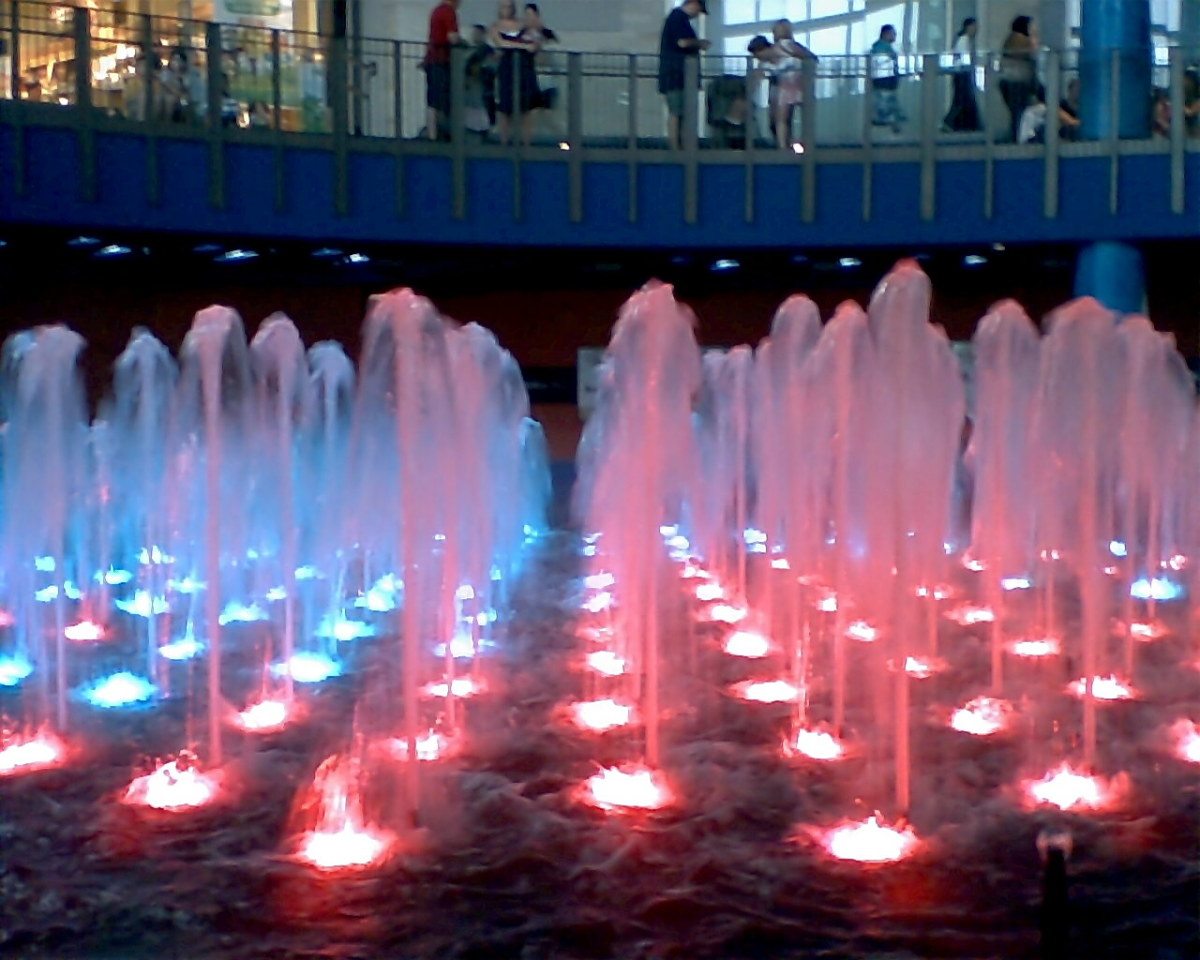 The Water Show