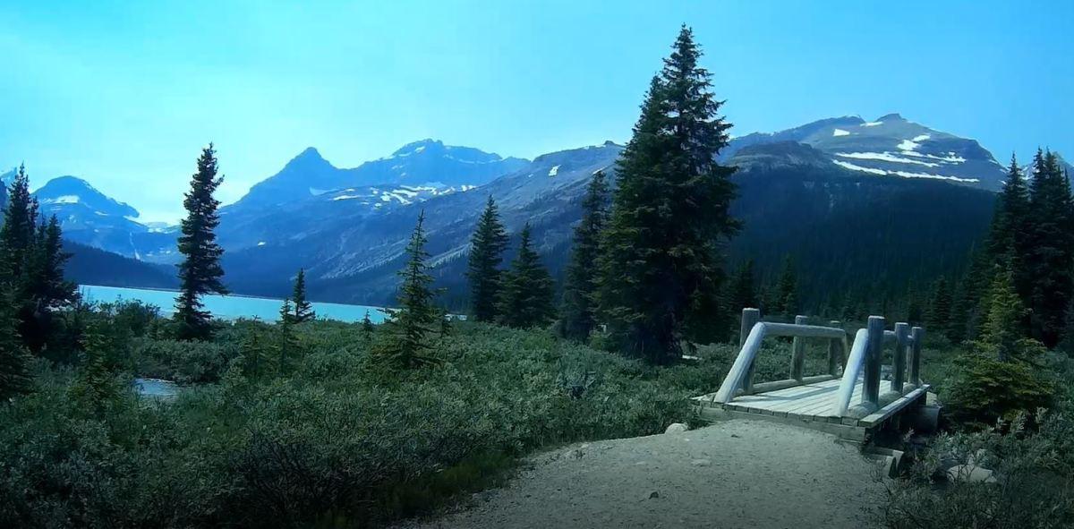 Bow Glacier Falls Trail in Banff National Park