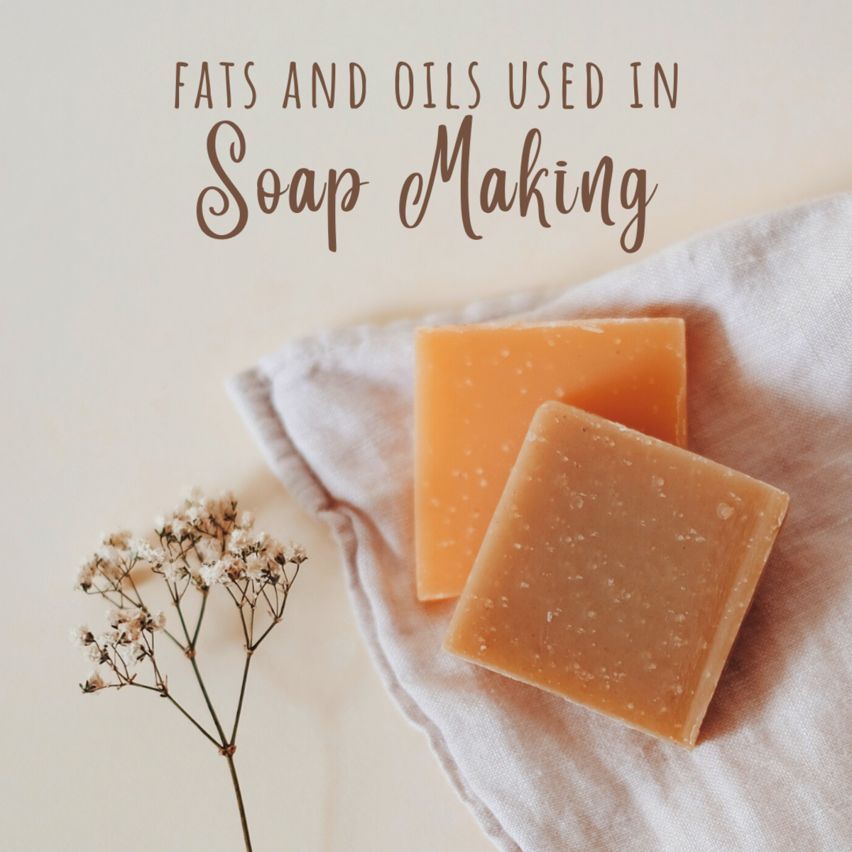 Learn about the fats and oils used when making soap.